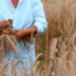 Праздник пшеницы в Неаполе