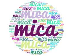 Mica 1