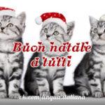 Поздравления с Рождеством на итальянском языке