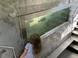 КАК МЫ ПРОВЕЛИ ЭТО ЛЕТО: Парк Рыбный Рай